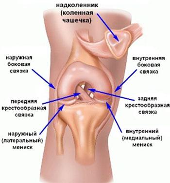 Травма коленного сустава симптомы компрессы на суставы с димексидом