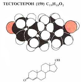 Анаболические/андрогенные стероиды туринабол что это такое
