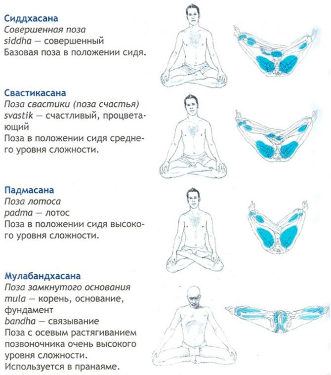Медитативные асаны